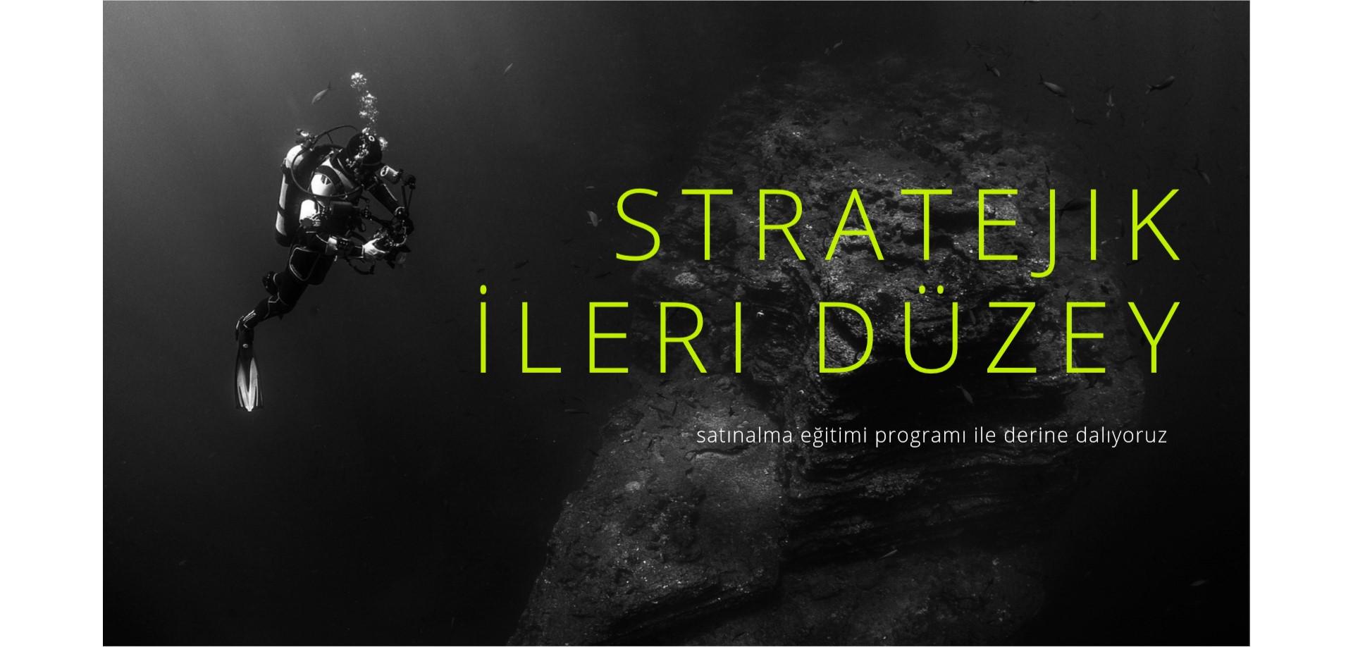 Stratejik ve İleri Düzey Satınalma Eğitim Programı
